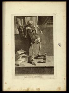 J. Gamelin, Nouveau recueil d'ostéologie et de myologie..., Toulouse, 1779 (BU Santé AJG, UT3PS, Res Med Fol 100246)