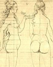 """Illustration figurant dans le chapitre """"De la proportion de la femme de dix faces"""""""